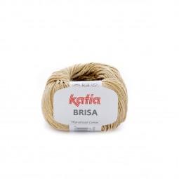 BRISA - CAMEL (27)