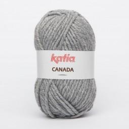 CANADA - GRIS (38)