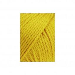 CARPE DIEM - GOLD (0150)