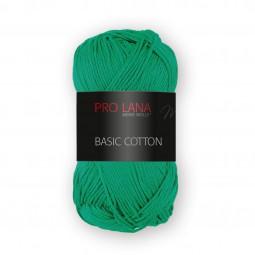 BASIC COTTON - Farbe 70