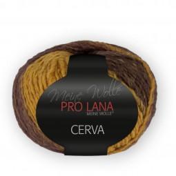 CERVA - Farbe 89