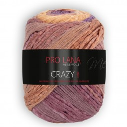 CRAZY COLOR - Farbe 84