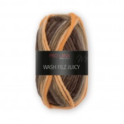 WASH-FILZ JUICY - Farbe 301