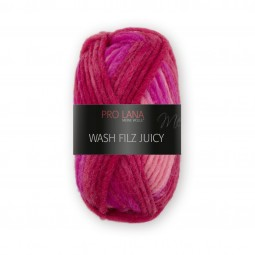 WASH-FILZ JUICY - Farbe 303