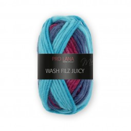 WASH-FILZ JUICY - Farbe 304