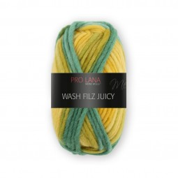 WASH-FILZ JUICY - Farbe 307
