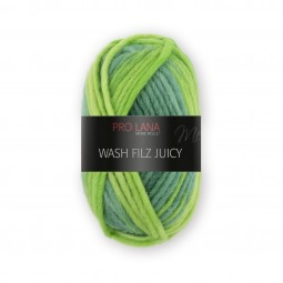 WASH-FILZ JUICY - Farbe 308