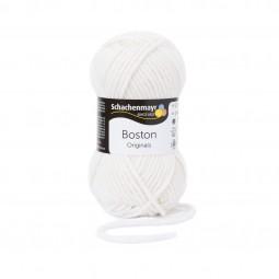 BOSTON - BRILLANTWEISS (00101)