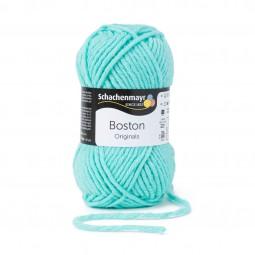 BOSTON - MINT (00066)