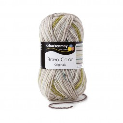 BRAVO COLOR - NEBEL COLOR (02108)