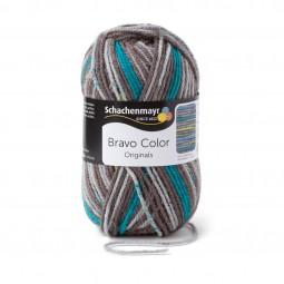 BRAVO COLOR - STEIN COLOR (02109)