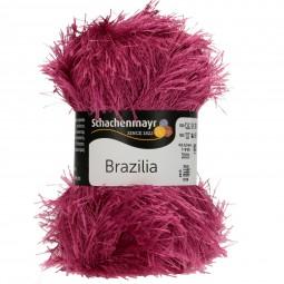 BRAZILIA - LILAROSA (01298)