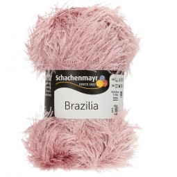 BRAZILIA - ORCHIDEE (01297)